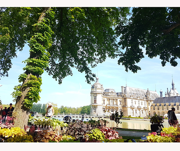 Journées des Plantes de Chantilly, the daily couture